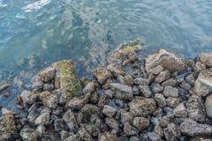 Shoreline Rocks Royalty Free Stock Images