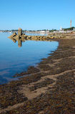 Shoreline showing Provincetown Massachusetts Royalty Free Stock Photos