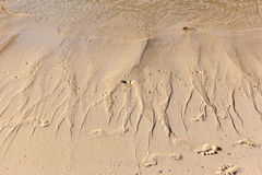 Shoreline with silt. Close up shot of the shoreline on a tropical island with water rivulets flowing back in the sea Royalty Free Stock Image
