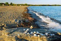 Shoreline of the Sound. The Long Island Sound creates the shoreline for Sherwood Island State Park Royalty Free Stock Photo