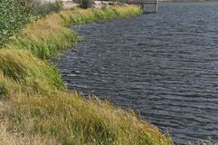 Shoreline at Sprague Lake Stock Photography