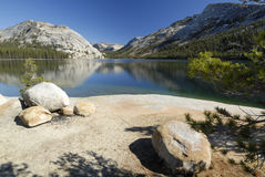 Shoreline of Tenaya Lake in Yosemite Royalty Free Stock Photography