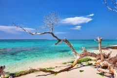 Shoreline of a tropical island Stock Photo