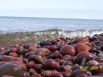 Shoreline vaggar Fotografering för Bildbyråer