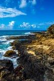 Shoreline-vertical hawaïen Photo libre de droits