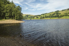 Shoreline view at Ladybower Reservoir in Derbyshire, England Royalty Free Stock Photo