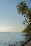Shoreline view from Lahaina Royalty Free Stock Photography