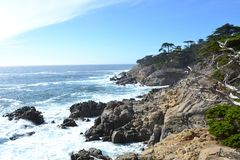 Shoreline view of the rocky northern California coast. Trees and a rocky northern California shoreline abut a restless Pacific Ocean stock photography