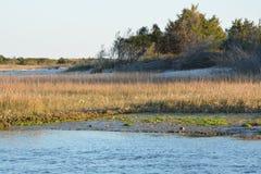 Shoreline Royalty Free Stock Image