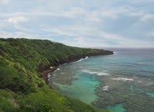 Shoreline volcanique luxuriant et Crystal Clear Water d'Hawaï Photos libres de droits