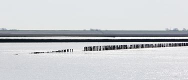 Shoreline of the Waddensea Royalty Free Stock Image