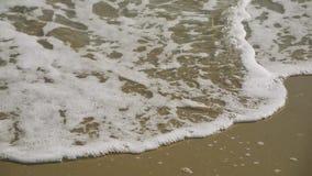 Shoreline waves  during summer day. Shoreline waves splash during summer day stock video footage