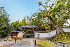 Shoren-en el templo en Kyoto Foto de archivo libre de regalías
