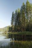 Shores of Bass Lake near Yosemite National Park Stock Photos