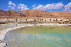 Shores of the Dead Sea in Israel Royalty Free Stock Image