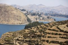 The shores of Isla del Sol. The shores of the Island of Isla del Sol in on the Bolivian side of Lake Titicaca royalty free stock photo