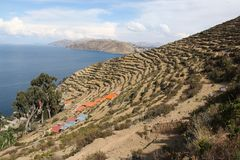 The shores of Isla del Sol. The shores of the Island of Isla del Sol in on the Bolivian side of Lake Titicaca royalty free stock photography