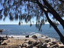 Shorncliffe Brisbane kust Arkivfoto