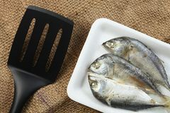 Fish in tray scene. royalty free stock image