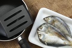 Fish in tray scene. The short bodied mackerel fish put on the food grade foam tray among sack background in the scene appear the pan also represent the fish and Stock Image