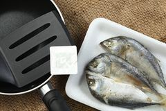 Fish in tray scene. The short bodied mackerel fish put on the food grade foam tray among sack background in the scene appear the pan also represent the fish and Stock Images