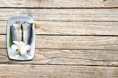Short-bodied mackerel  Rastrelliger brachysoma on wood backgro Royalty Free Stock Photos