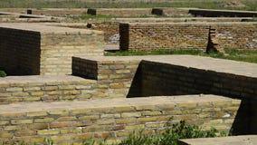 Short Brick Walls in Field. Steady, medium close up shot of a short brick walls in a field stock video footage