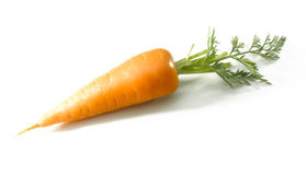 Short carrot isolated on white Stock Photos