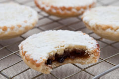 Short crust pastry mince pies Royalty Free Stock Photography