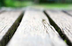 Short depth of field gray wooden boardwalk weathered Stock Photo