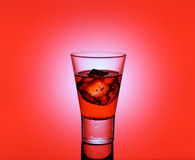 Short drink glass with red liquid and ice cubes Royalty Free Stock Images