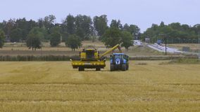 Short film showing process of harvesting rye by agricultural machinery. Agriculture concept backgrounds. Sweden. Short film showing process of harvesting rye by stock footage
