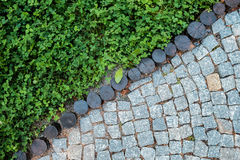 Short grass lawn and cobblestone pavement texture Royalty Free Stock Photo