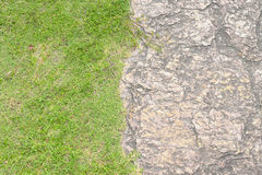 Short grass lawn and seamless rock texture Royalty Free Stock Photos