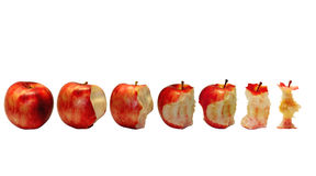 Short life. This apple, at first whole, then variations, and after and at all a bit Stock Photography