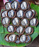 Short mackerel prepared as Pla Thu on Bamboo Basket in Samut Songkhram Thailand Royalty Free Stock Images