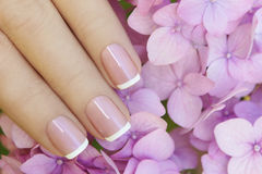 Short pink lilac French manicure. royalty free stock image