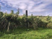 Fenced Landscape in County Mayo, Western Ireland. Short Posts Fenced Landscape in County Mayo, Western Ireland royalty free stock photo