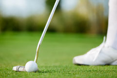 Short Putt. Golfer making short putt, close up Royalty Free Stock Images
