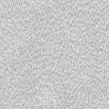 Short white fur texture. Background Stock Images