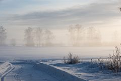 Very cold winter day in countryside. royalty free stock image