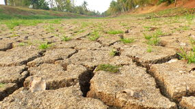 The shortage of water for agriculture. Royalty Free Stock Photos