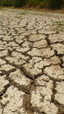 The shortage of water for agriculture. Stock Photography