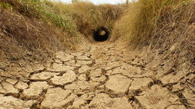 The shortage of water for agriculture. Royalty Free Stock Images