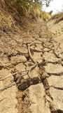 The shortage of water for agriculture. Stock Image