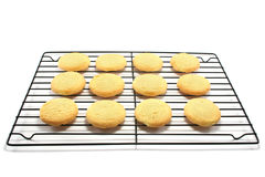 Shortbread on a Cooling Rack. Oven fresh all butter shortbread cookies on a metal cooling rack stock photo