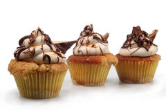 Shortbread Cupcakes Stock Image