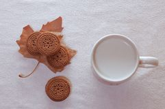 Shortbread in white plate and cup of milk on table Royalty Free Stock Image