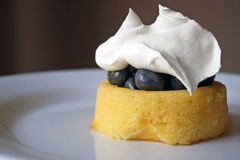 Shortcake голубики с взбитой сливк Стоковое Изображение