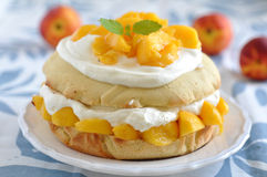 Shortcake персика стоковые изображения